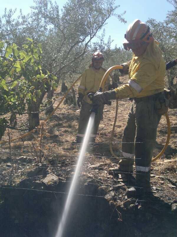 El Infoex declara el nivel 1 por un incendio en Palomero