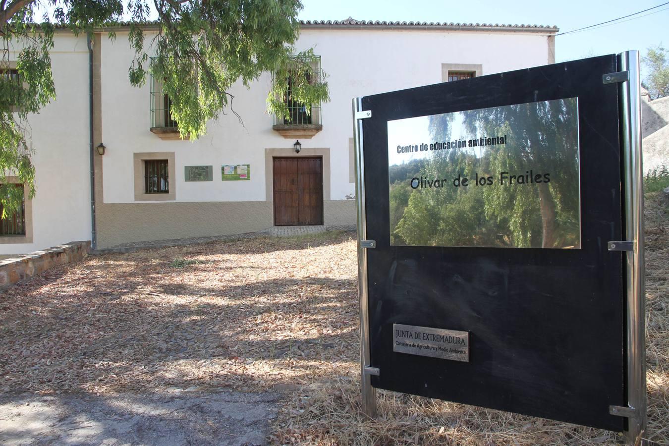 S.O.S para el Parque del Olivar