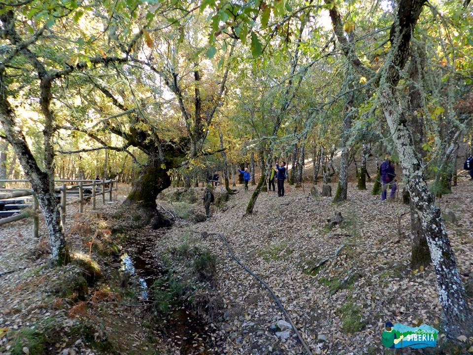 Ruta por el Sendero de La Muela, en Villarta de los Montes
