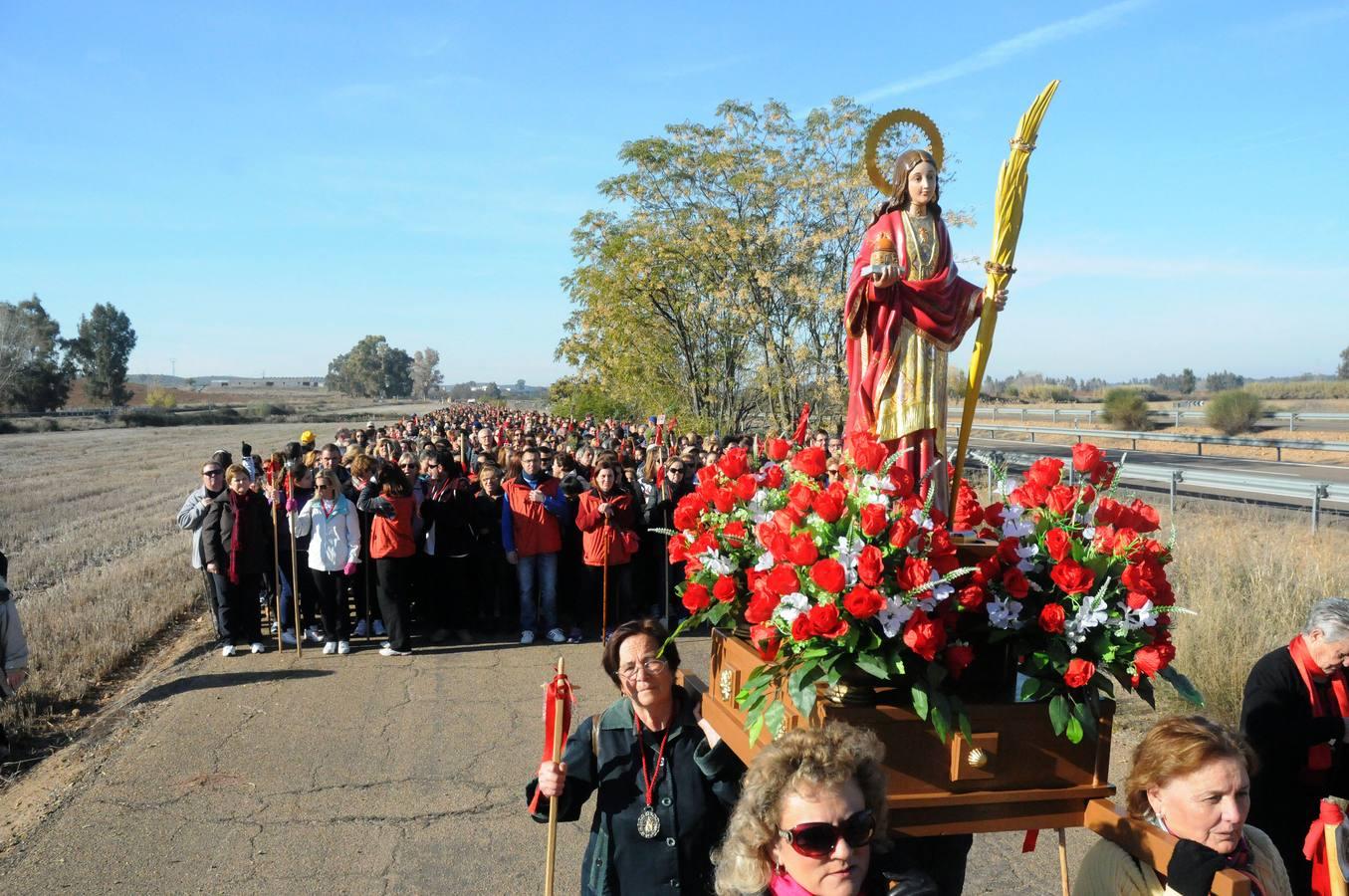Más de 2.000 personas peregrinan hacia Mérida en honor a la Mártir