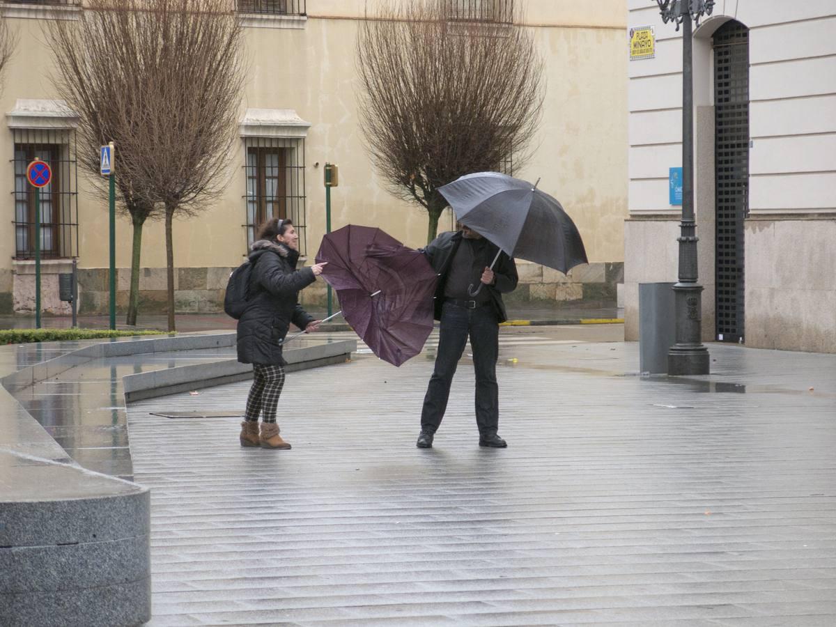 El temporal de viento y lluvia provoca daños en Badajoz